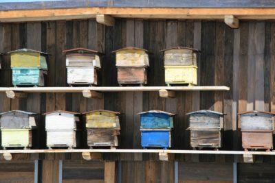 Folie-Douce-Val-D'Isere-JMV-Resort-architectes ruche bois
