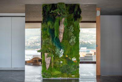 Maison Bourdeau - mur végétal stabilisé - miroir -JMV Resort